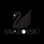 New project Swarovski in Groningen- CERPASUR, S.L.